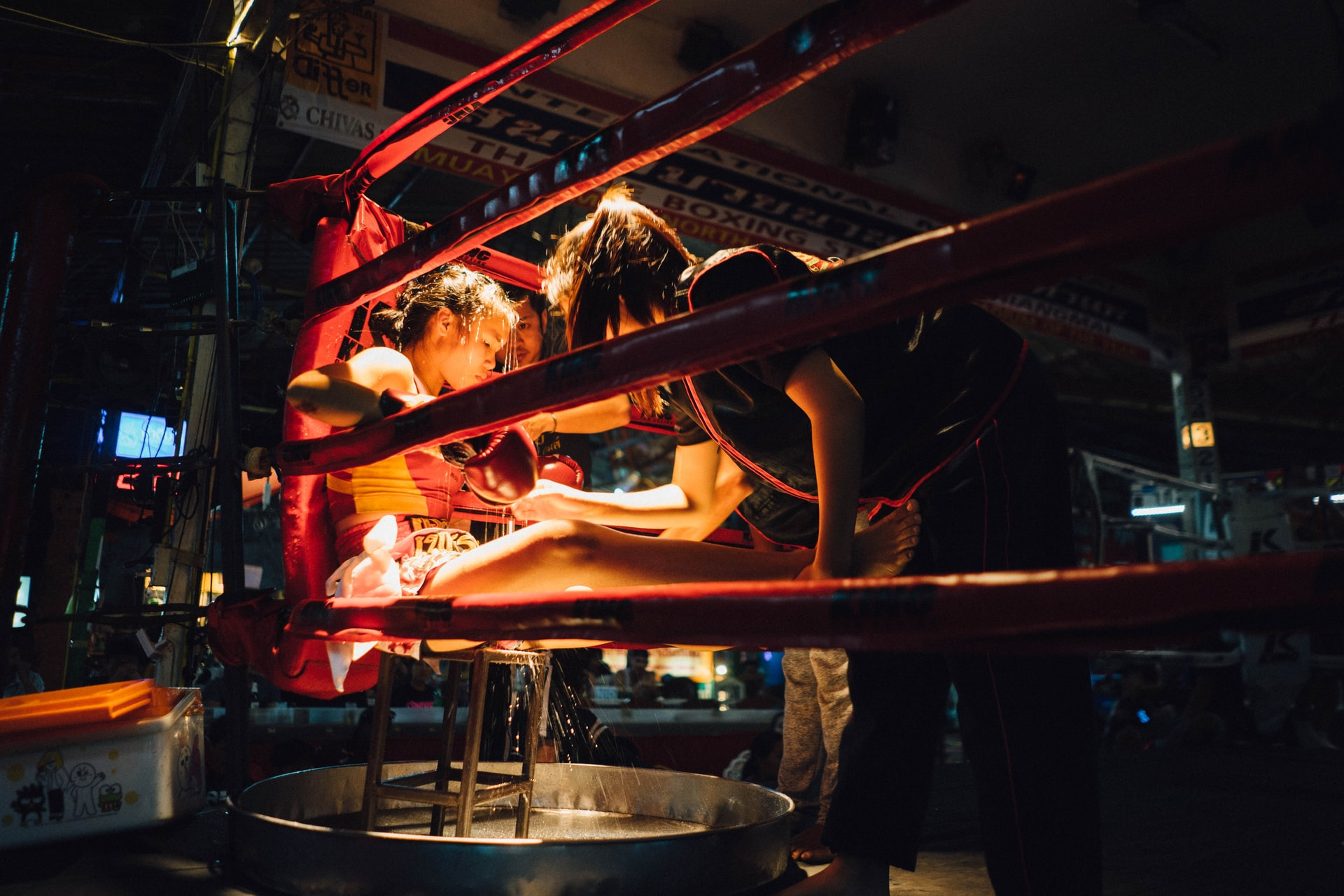 Typy na High League MMA